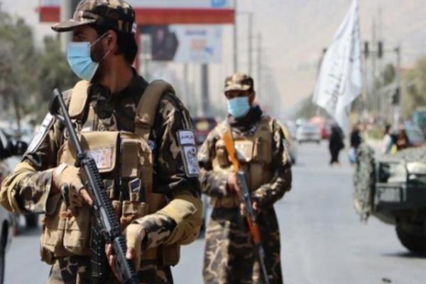 اس سال 6,34,000 سے زیادہ افغان بنے شرنارتھی